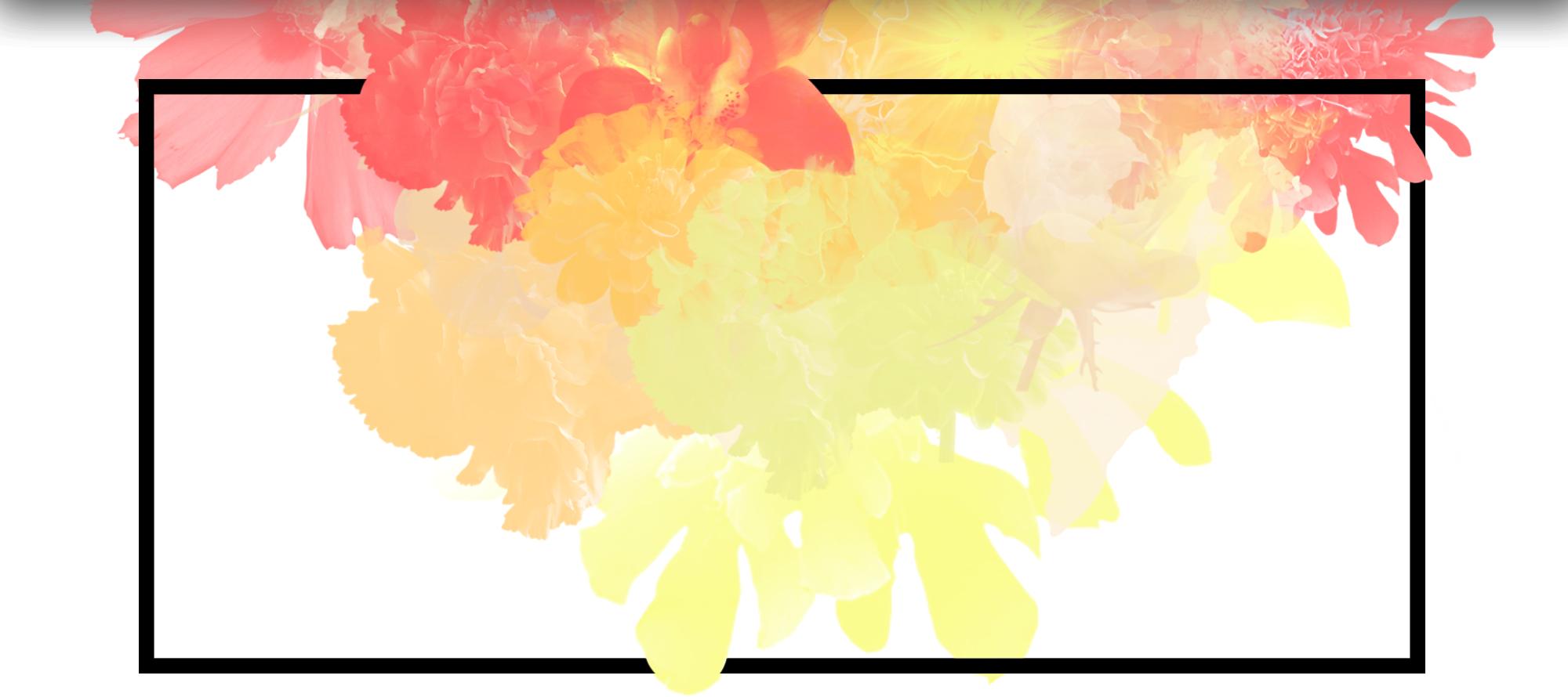 Fleurs <span> à Fleurs </span>